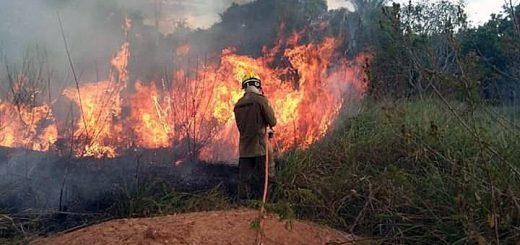 Brazilian Amazon forest fire