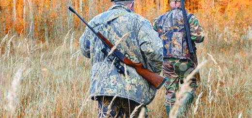 group of hunters during hunting in forest