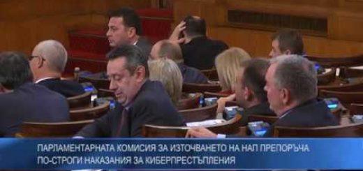 Парламентарната комисия за източването на НАП препоръча по-строги наказания за киберпрестъпления