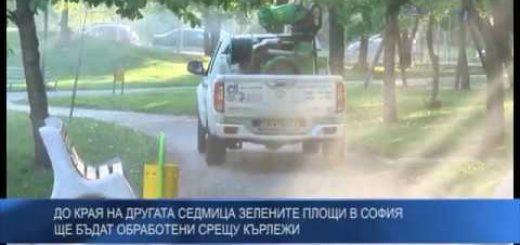 До края на другата седмица зелените площи в София  ще бъдат обработени срещу кърлежи