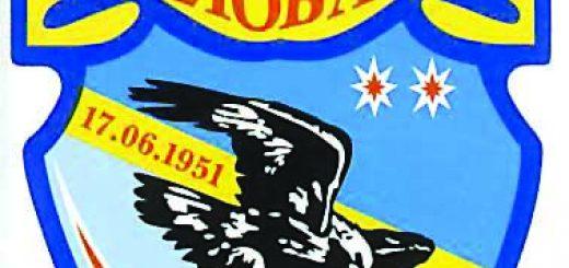 emblema-25